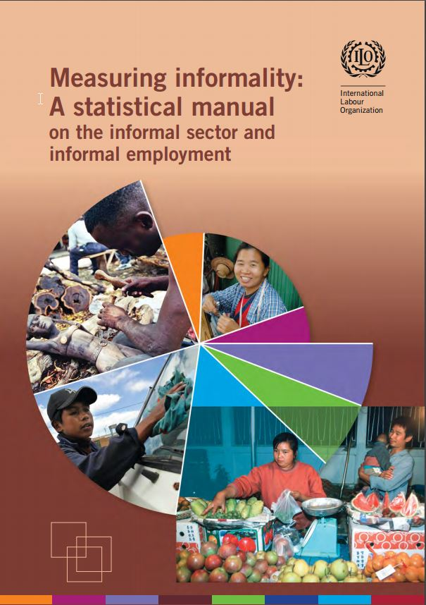 A statistical manual on the informal sector and informal employment