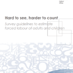 Hard to see, harder to count: Survey guidelines to estimate forced labour
