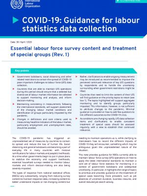 Essential labour force survey content and treatment of special groups