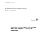 Resolution concerning the methodology of the SDG indicator 8.b.1 on youth employment