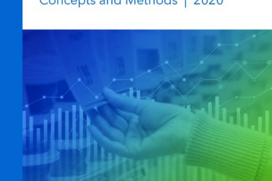 Consumer Price Index Manual: Concepts and Methods | 2020